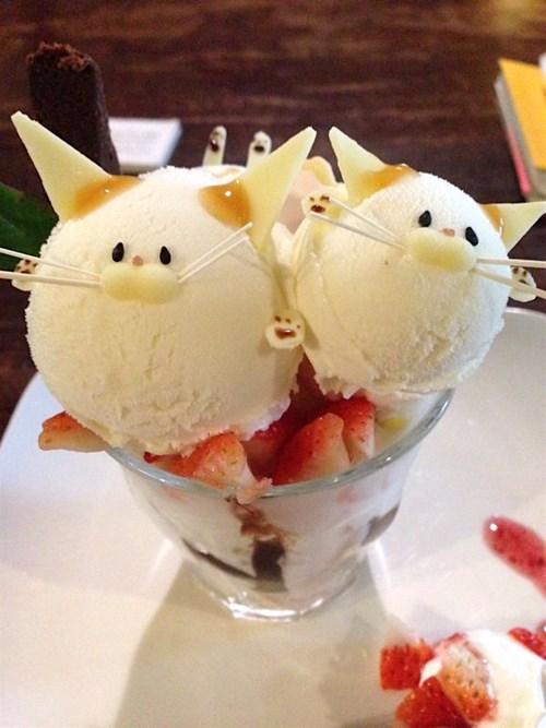 Không nỡ lòng ăn món kem mặt mèo siêu đáng yêu này