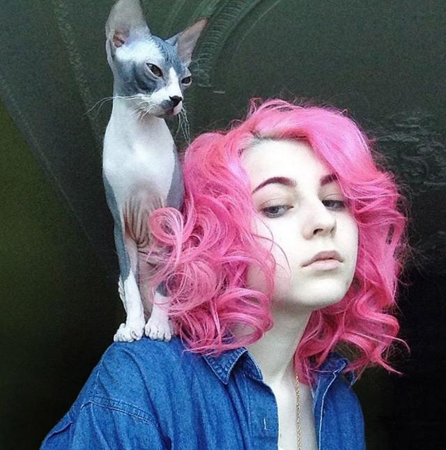 Nổi tiếng nhờ cắt tóc giống hình mèo cưng