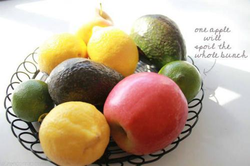 Mẹo giữ rau củ quả tươi cả tuần