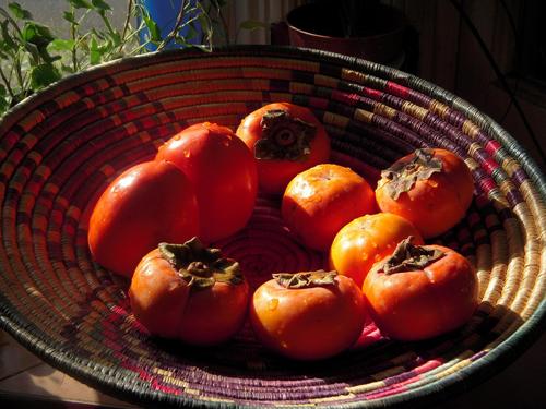 Đặc sản mùa thu ở xứ sở kim chi
